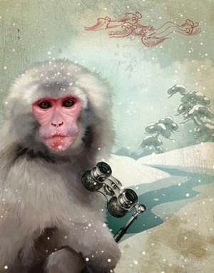 Ob_macaque_medium_2